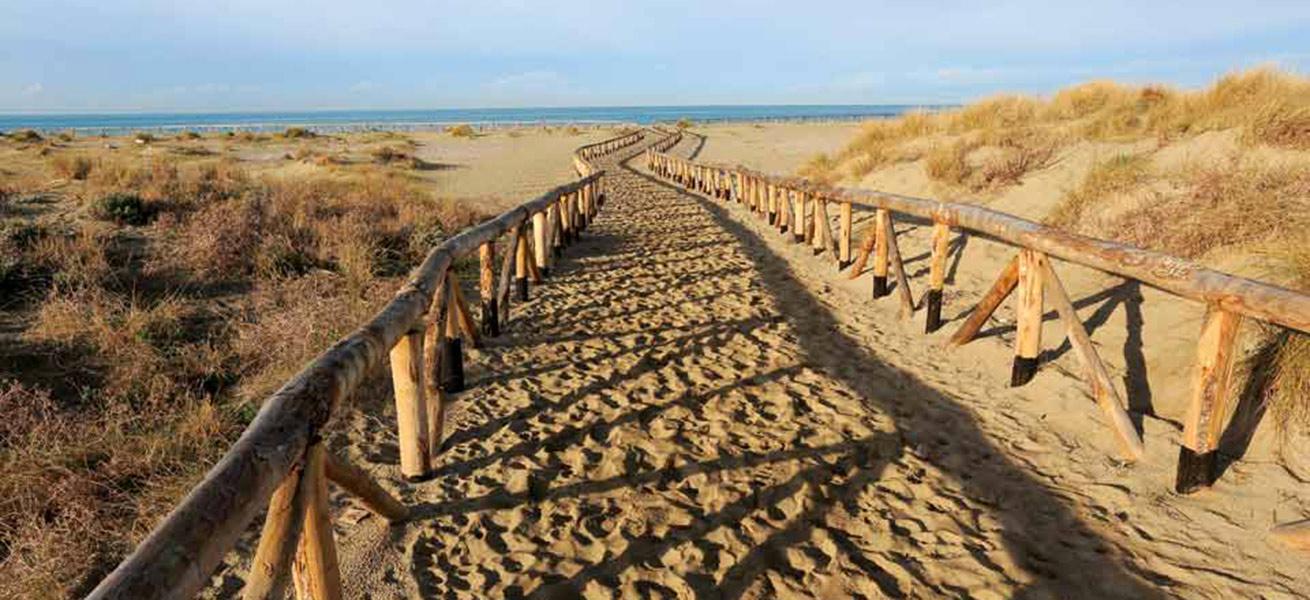versilia-spiaggia-dune