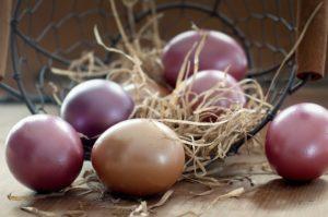 Pasqua in Versilia