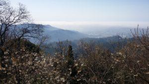 Panorama da La Culla- Escursioni in Versilia