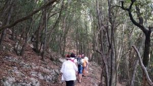 panorama sul sentiero verso la roccia dei Liguri Apuani