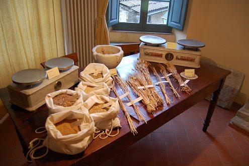 antro del corchia levigliani museo pietra piegata