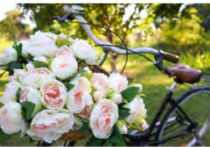 arte fiori forte piazza dante forte dei marmi