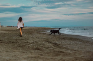 versilia dog-friendl