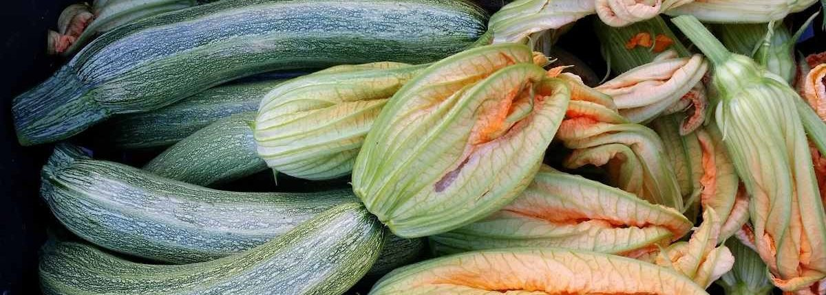 zucchine per scarpaccia