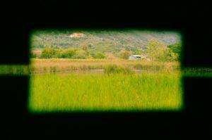 oasi lipu