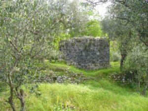 escursione I segreti del castello di Montecastrese, rovine castello